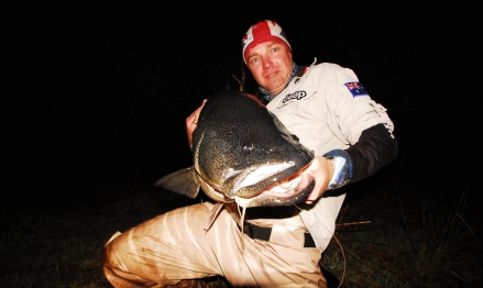 106cm Murray cod
